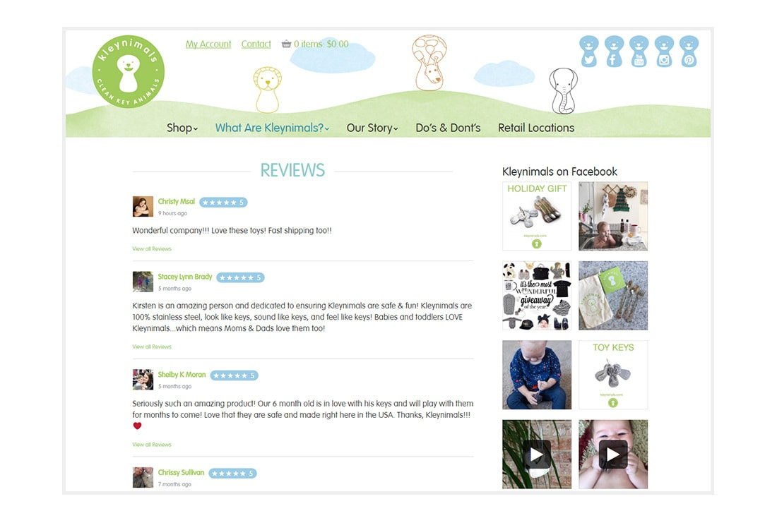 Kleynimals Website reviews page - Custom WordPress Theme